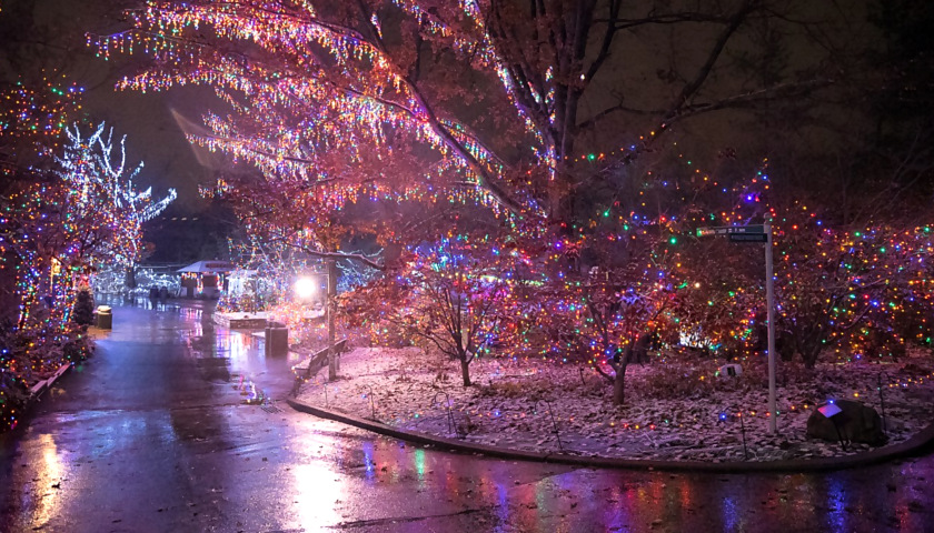 Columbus Zoo Christmas Lights 2020 How Much Columbus Zoo Announces Wildlights 2019 Schedule   The Ohio Star