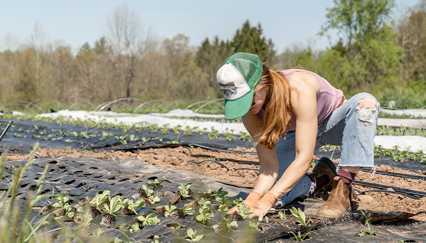 Woman with ball cap on, out in the fields of a farm